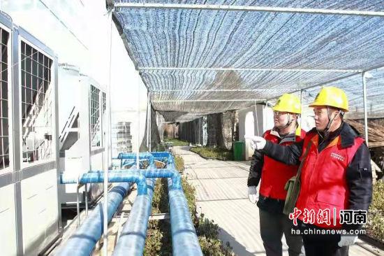 供电员工深入种植基地服务客户。张锐 摄