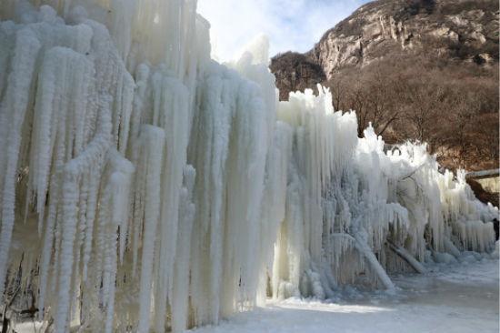 实拍河南鲁山天龙池冰瀑冰挂景观 董飞 摄