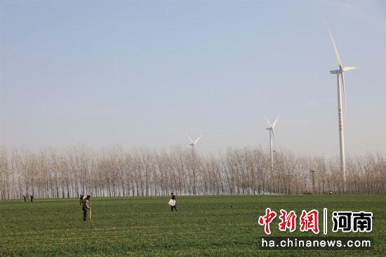 河南省延津县农民在麦田里劳作,为小麦丰收打下坚实基础 邓小强摄