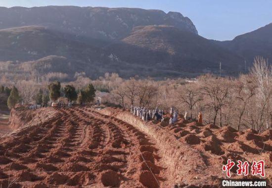 少林僧众们挖好的树坑,一排又一排。 少林寺供图 摄