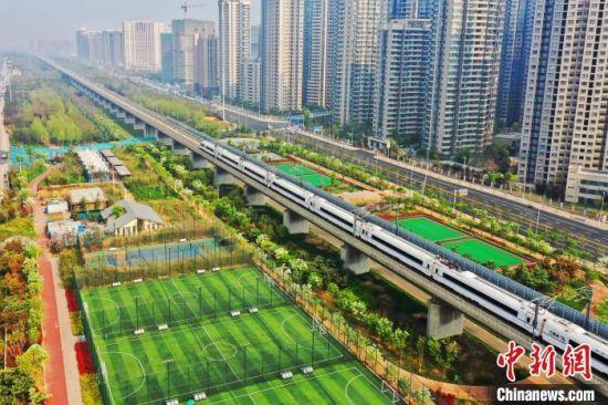 高铁在京广高铁河南段穿梭。 王玮 摄