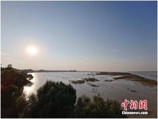 站在黑岗口黄河河势观测台上,美景尽收眼前。 中新网记者 张尼 摄