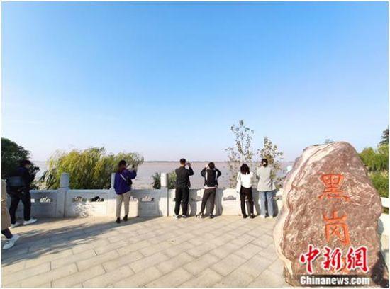 黑岗口黄河河势观测台周边景色。 中新网记者 陈海峰 摄